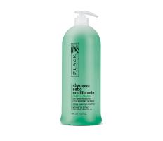 Black Sebo Control Shampoo 1000ml - Šampón pre mastný vlas