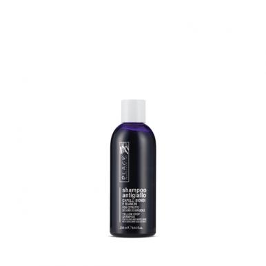 Black Yellow Stop 250ml - Šampón na šedivé a melírované vlasy