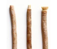 Yoni Tootbrush Miswak - Prírodná zubná kefka